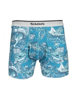 BOXER SIMMS BRIEF SLAMDOWN MERIDIAN